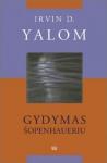 Irvin D. Yalom Gydymas Šopenhaueriu